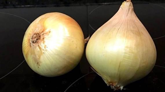 ¿Conoces el TRUCO de la cebolla?